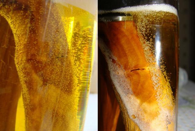 Вакуумная пропитка древесины в домашних условиях